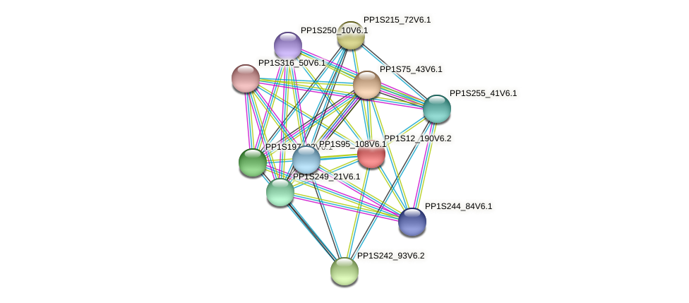 PP1S12_190V6.1 protein (Physcomitrella patens) - STRING interaction network
