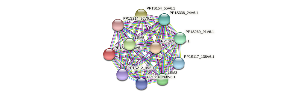 PP1S12_196V6.1 protein (Physcomitrella patens) - STRING interaction network