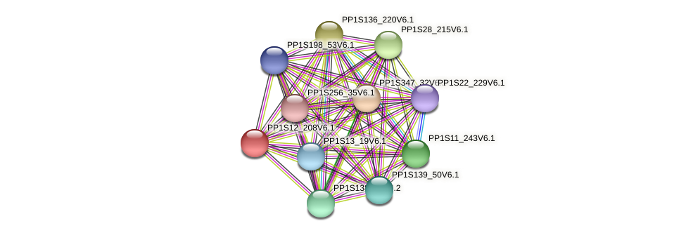 PP1S12_208V6.1 protein (Physcomitrella patens) - STRING interaction network