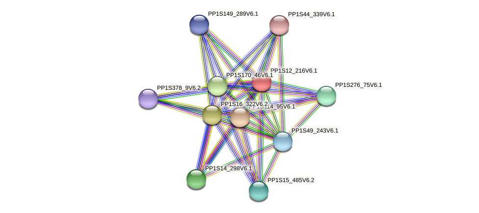 PP1S12_216V6.1 protein (Physcomitrella patens) - STRING interaction network