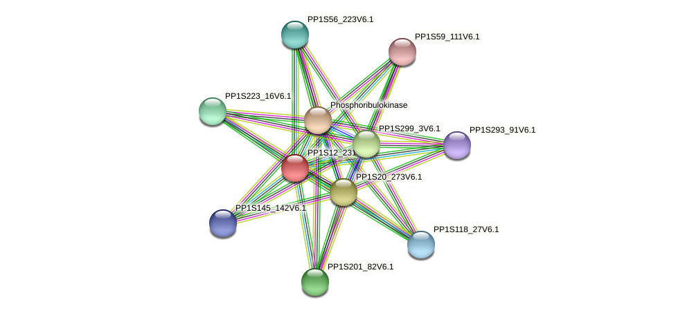 PP1S12_231V6.1 protein (Physcomitrella patens) - STRING interaction network