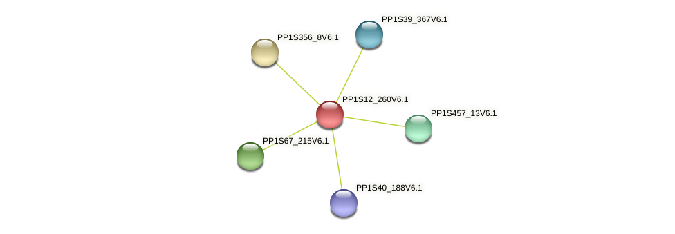 PP1S12_260V6.1 protein (Physcomitrella patens) - STRING interaction network