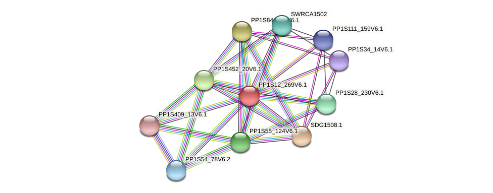 PP1S12_269V6.1 protein (Physcomitrella patens) - STRING interaction network