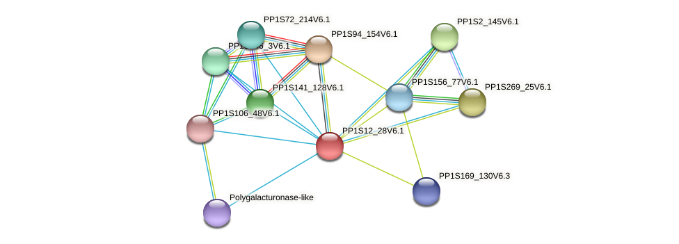 PP1S12_28V6.1 protein (Physcomitrella patens) - STRING interaction network
