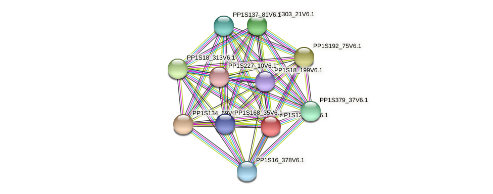 PP1S12_290V6.1 protein (Physcomitrella patens) - STRING interaction network