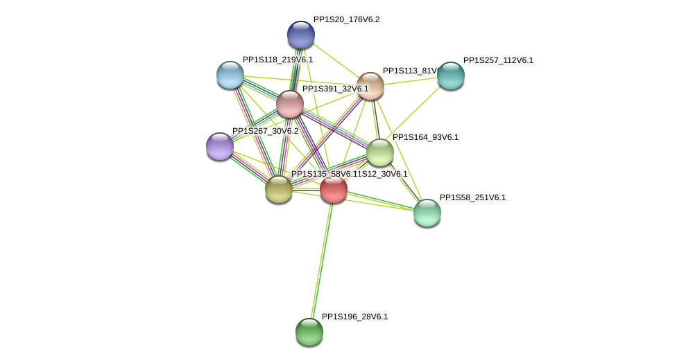 PP1S12_30V6.1 protein (Physcomitrella patens) - STRING interaction network