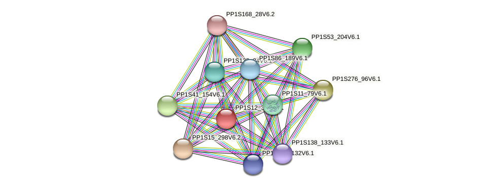 PP1S12_339V6.1 protein (Physcomitrella patens) - STRING interaction network