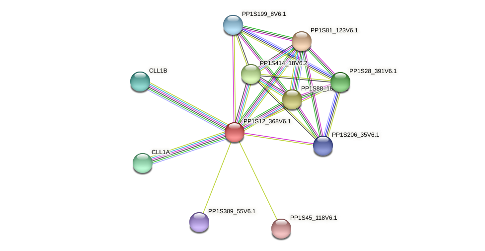 PP1S12_368V6.1 protein (Physcomitrella patens) - STRING interaction network
