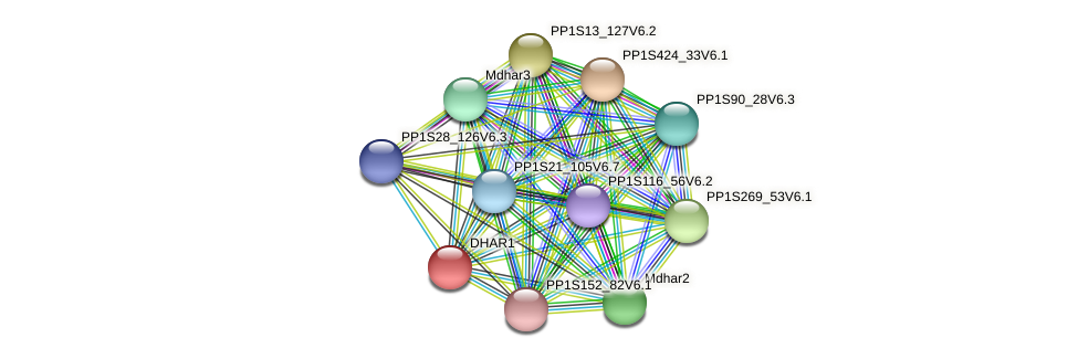 PP1S12_401V6.1 protein (Physcomitrella patens) - STRING interaction network
