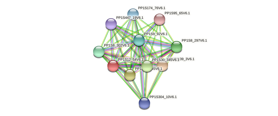 PP1S12_54V6.1 protein (Physcomitrella patens) - STRING interaction network