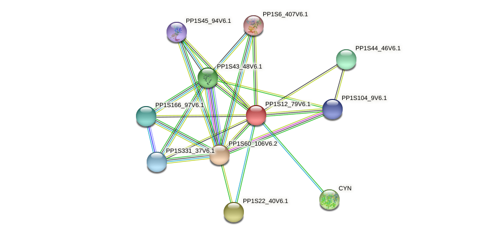PP1S12_79V6.1 protein (Physcomitrella patens) - STRING interaction network