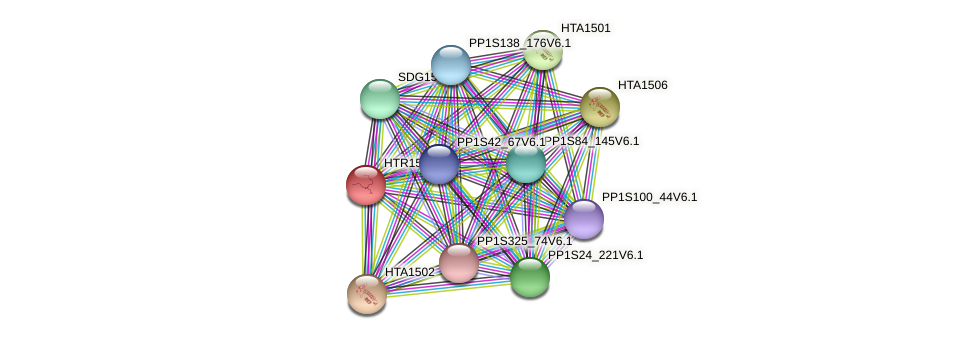 PP1S12_93V6.1 protein (Physcomitrella patens) - STRING interaction network