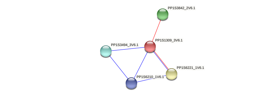 PP1S1309_3V6.1 protein (Physcomitrella patens) - STRING interaction network