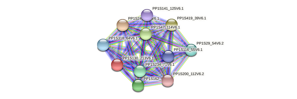 PP1S130_213V6.1 protein (Physcomitrella patens) - STRING interaction network