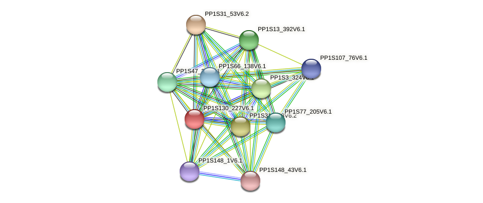PP1S130_227V6.1 protein (Physcomitrella patens) - STRING interaction network