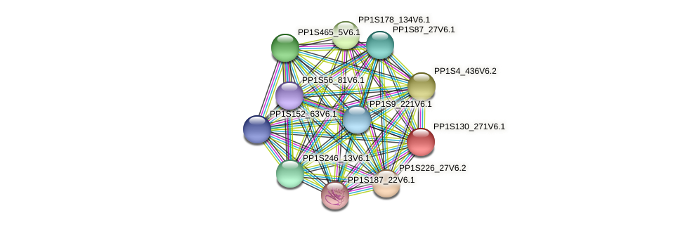 PP1S130_271V6.1 protein (Physcomitrella patens) - STRING interaction network