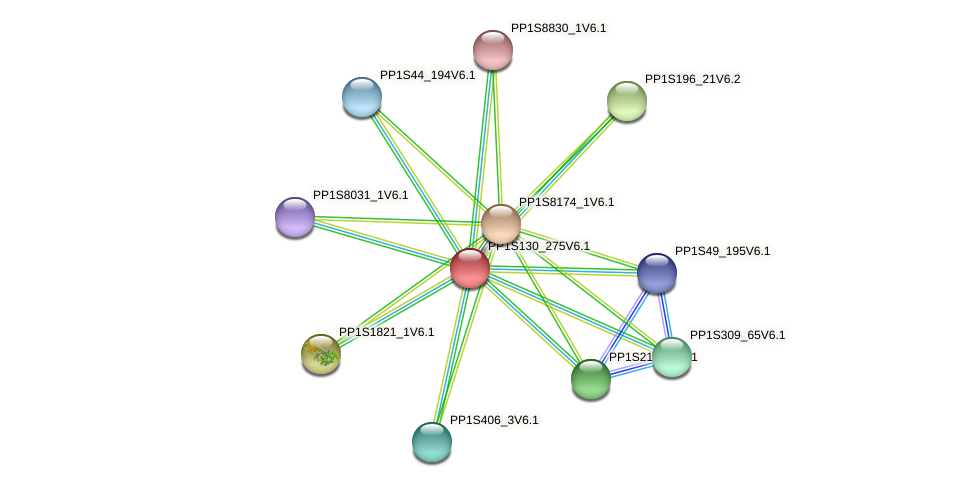 PP1S130_275V6.1 protein (Physcomitrella patens) - STRING interaction network