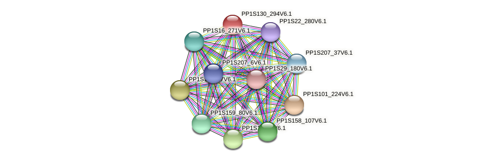 PP1S130_294V6.1 protein (Physcomitrella patens) - STRING interaction network