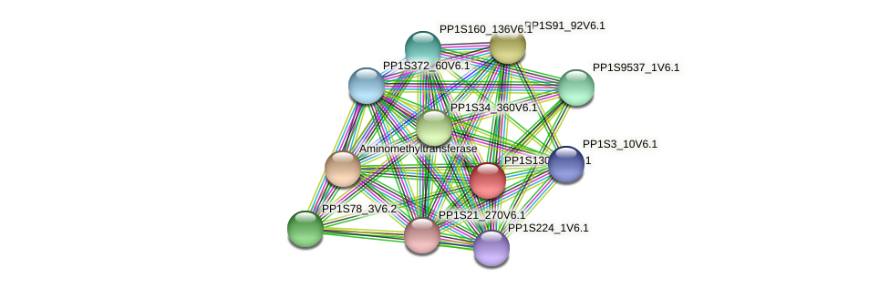 PP1S130_89V6.1 protein (Physcomitrella patens) - STRING interaction network