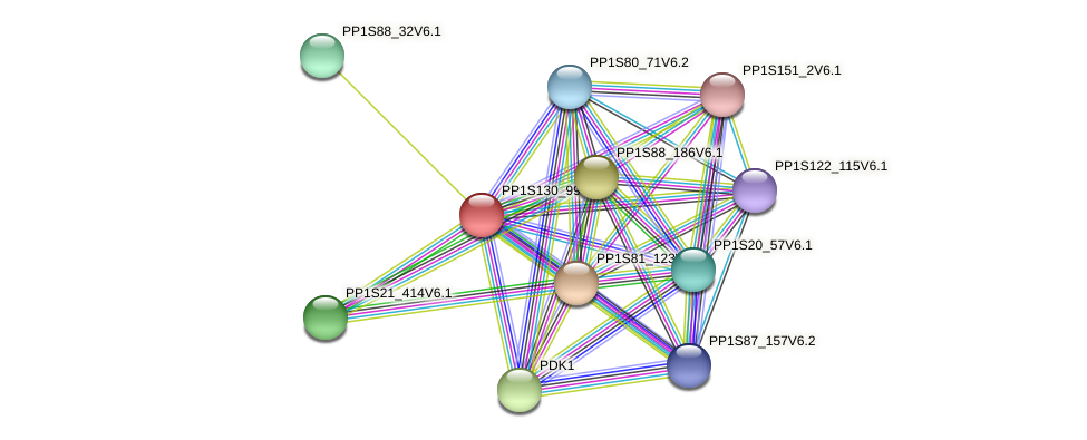 PP1S130_99V6.1 protein (Physcomitrella patens) - STRING interaction network