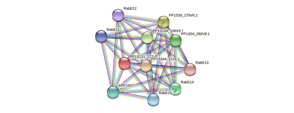 PP1S131_123V6.1 protein (Physcomitrella patens) - STRING interaction network