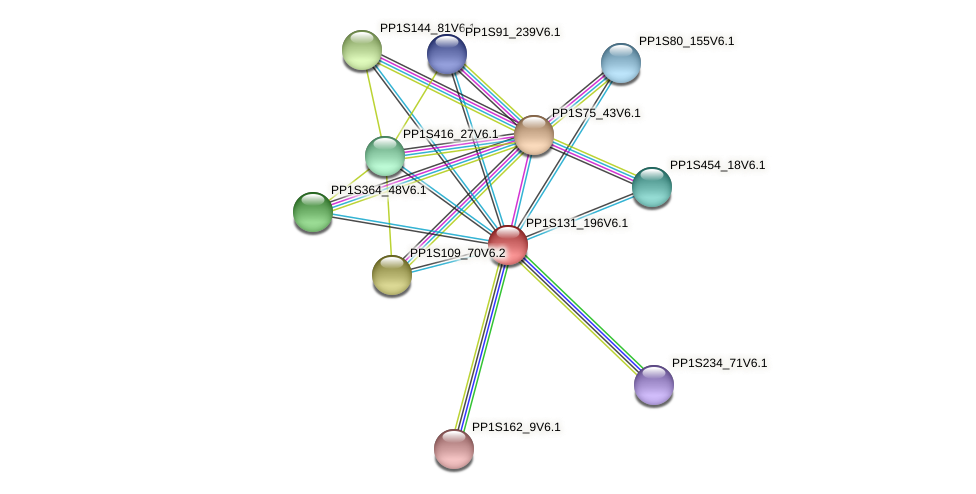PP1S131_196V6.1 protein (Physcomitrella patens) - STRING interaction network