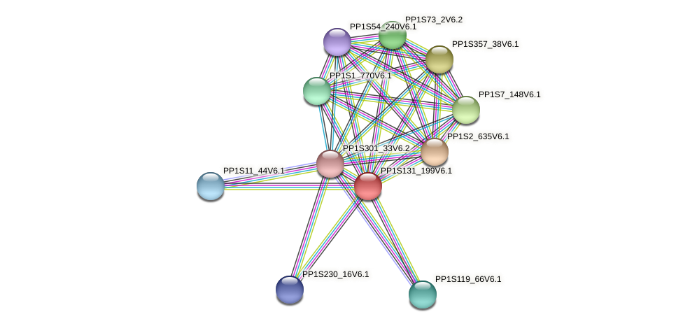 PP1S131_199V6.1 protein (Physcomitrella patens) - STRING interaction network