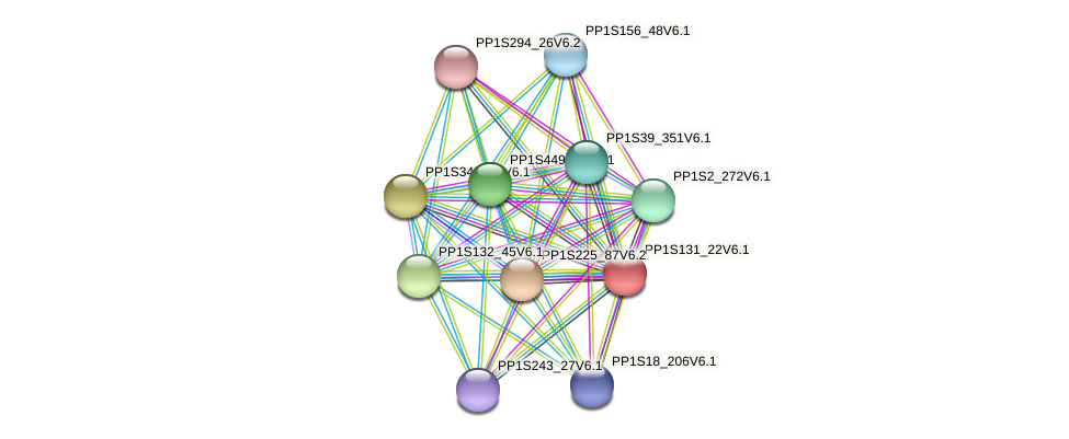 PP1S131_22V6.1 protein (Physcomitrella patens) - STRING interaction network