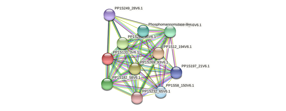 PP1S131_3V6.1 protein (Physcomitrella patens) - STRING interaction network
