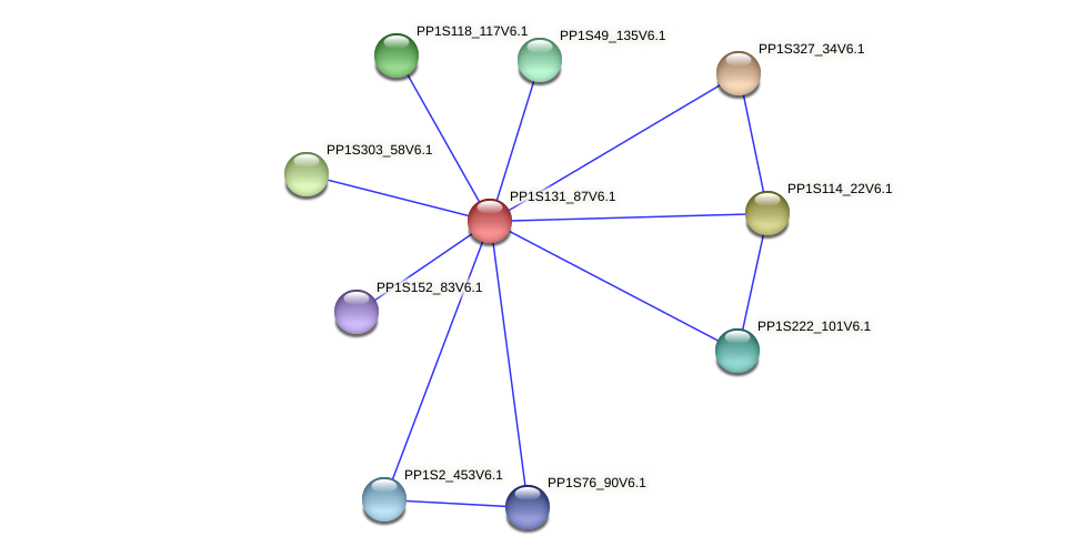 PP1S131_87V6.1 protein (Physcomitrella patens) - STRING interaction network