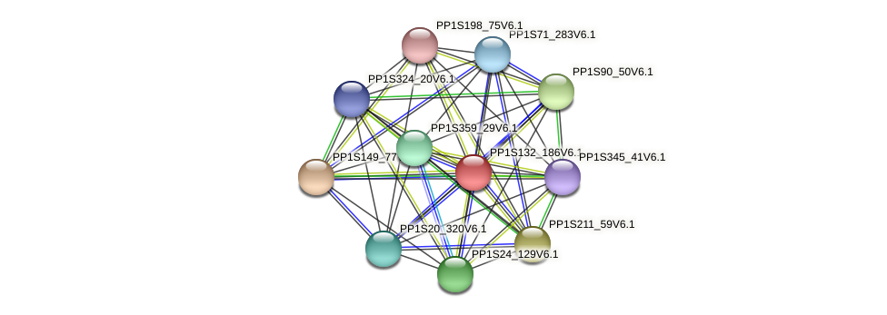PP1S132_186V6.1 protein (Physcomitrella patens) - STRING interaction network