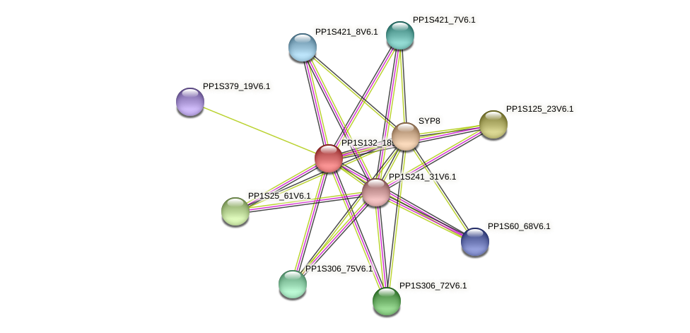 PP1S132_189V6.1 protein (Physcomitrella patens) - STRING interaction network
