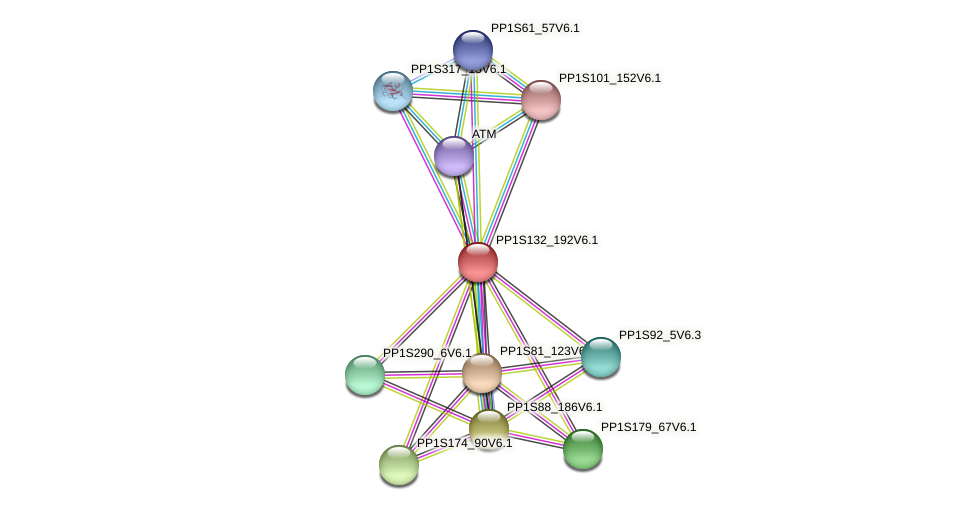 PP1S132_192V6.1 protein (Physcomitrella patens) - STRING interaction network
