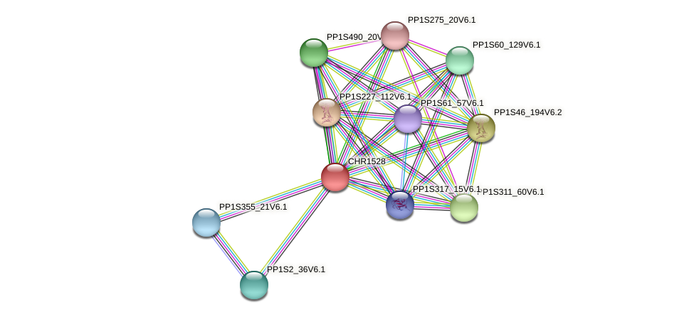 CHR1528 protein (Physcomitrella patens) - STRING interaction network