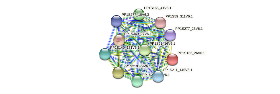 PP1S132_26V6.1 protein (Physcomitrella patens) - STRING interaction network