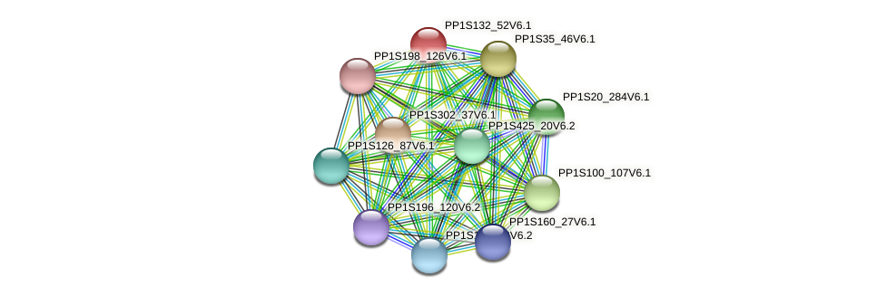 PP1S132_52V6.1 protein (Physcomitrella patens) - STRING interaction network