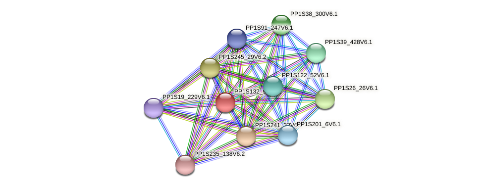 PP1S132_95V6.1 protein (Physcomitrella patens) - STRING interaction network