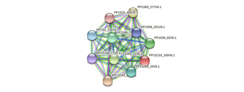 PP1S133_100V6.1 protein (Physcomitrella patens) - STRING interaction network
