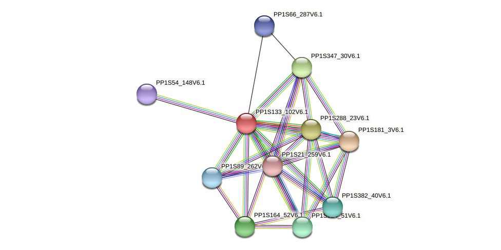 PP1S133_102V6.1 protein (Physcomitrella patens) - STRING interaction network
