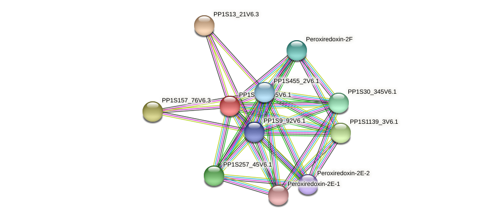 PP1S133_105V6.1 protein (Physcomitrella patens) - STRING interaction network