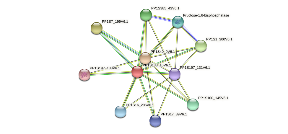 PP1S133_10V6.1 protein (Physcomitrella patens) - STRING interaction network