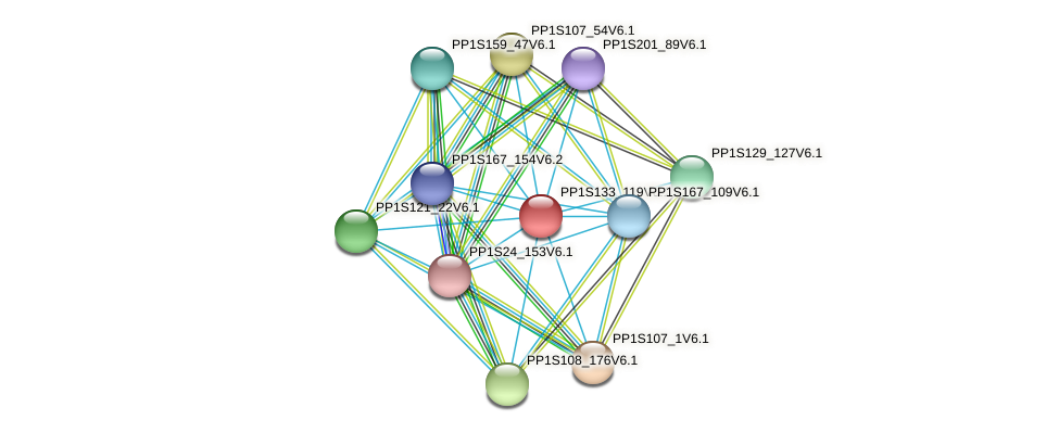 PP1S133_119V6.1 protein (Physcomitrella patens) - STRING interaction network