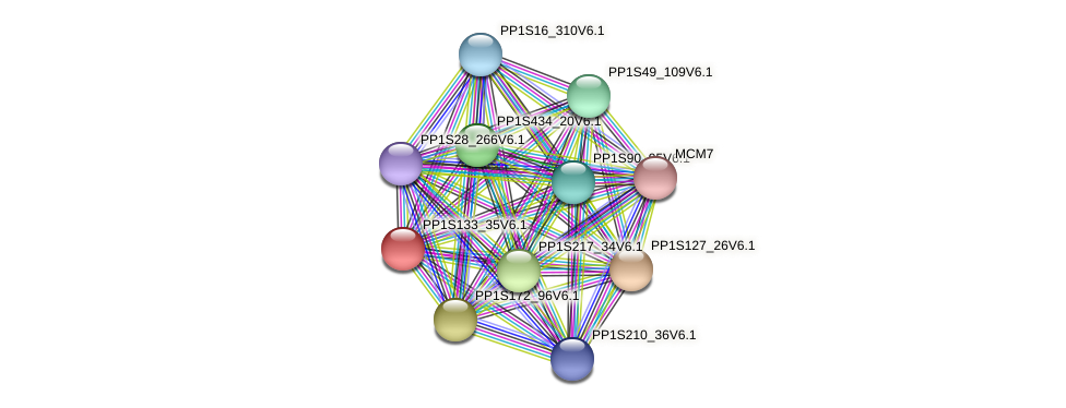 PP1S133_35V6.1 protein (Physcomitrella patens) - STRING interaction network