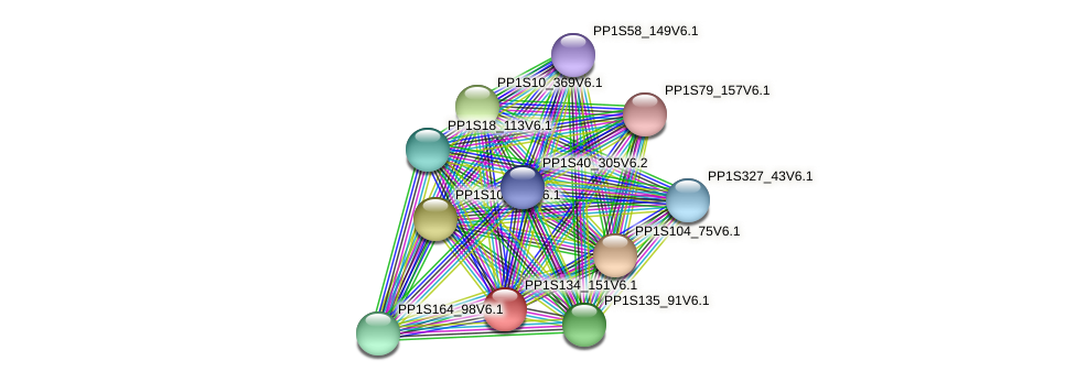 PP1S134_151V6.1 protein (Physcomitrella patens) - STRING interaction network