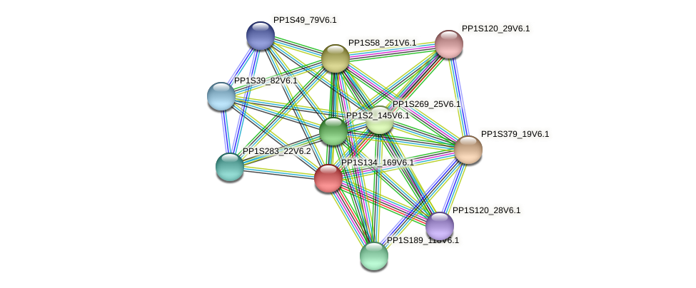 PP1S134_169V6.1 protein (Physcomitrella patens) - STRING interaction network