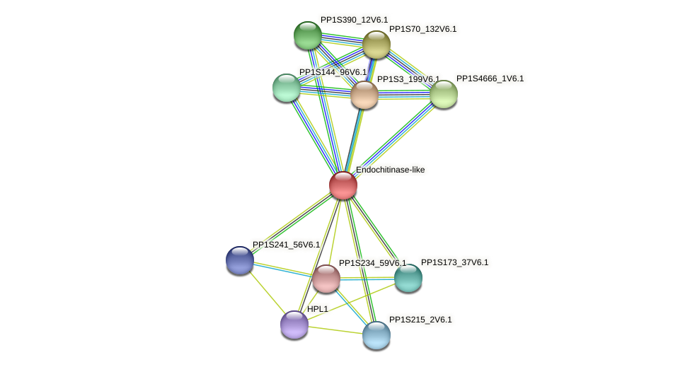 PP1S134_173V6.1 protein (Physcomitrella patens) - STRING interaction network