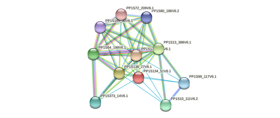 PP1S134_51V6.1 protein (Physcomitrella patens) - STRING interaction network