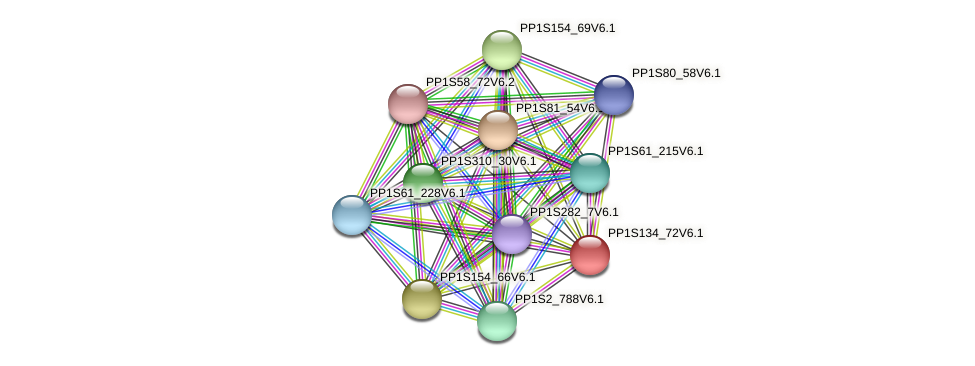 PP1S134_72V6.1 protein (Physcomitrella patens) - STRING interaction network
