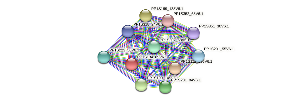 PP1S134_89V6.1 protein (Physcomitrella patens) - STRING interaction network