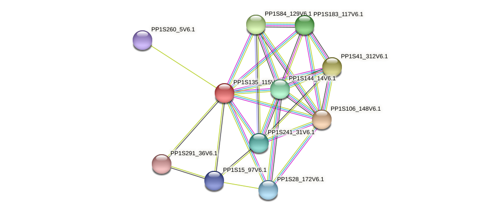 PP1S135_115V6.1 protein (Physcomitrella patens) - STRING interaction network